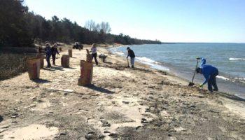 Cawaja Beach Maintenance - CPOA members cleaning the beach